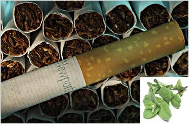 Newport menthol cigarettes