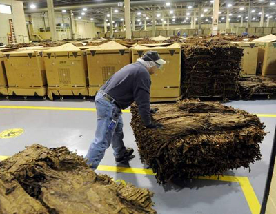 tobacco producers
